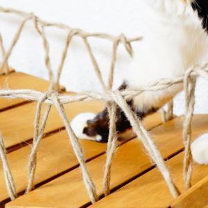 【作り方も公開】猫用の吊り橋(キャットブリッジ)をDIYしてみた!