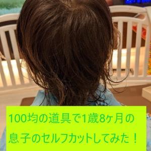 【育児】100均の道具で1歳8ヶ月の息子のセルフカットしてみた!ー体験談ー