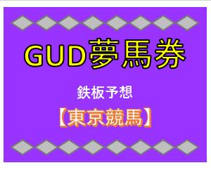 【鉄板】2月16日(日) 東京競馬の予想!!共同通信杯の予想も。。