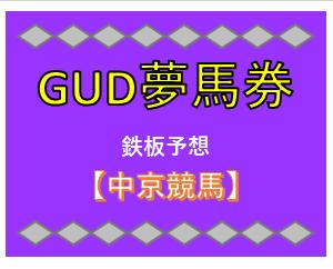 【鉄板】2月29日(土) 中京競馬の予想!!