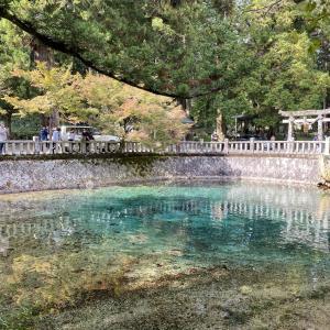 神秘!エメラルドグリーンの泉を見に行こう【山口県美祢市】【弁天池】