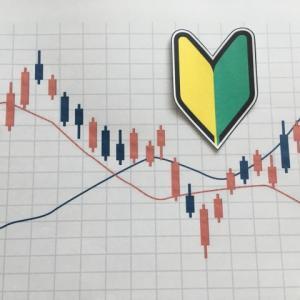 年収300万円台が米国株投資を1年やってみた感想