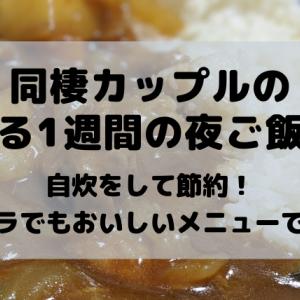 【同棲カップルの夜ご飯】とある平日1週間の夜ご飯を紹介!自炊をして超節約!2020年3月編です!