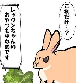 野 菜 が 高 い !