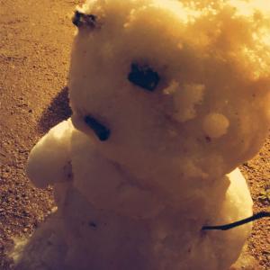 冬の寒さ対策