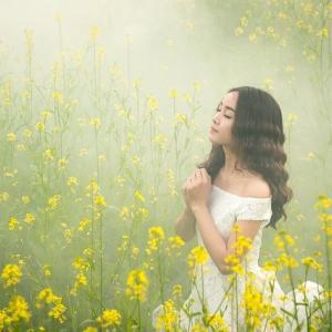高保湿ボタニカル化粧水は幸福な若返りの香りのフランキンセンス入り