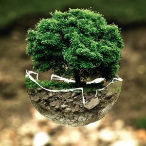新書大賞1位人新世資本論!気候変動・資本主義幻想・地球コモン再建