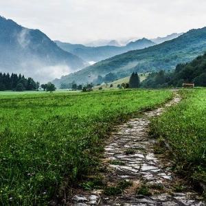 【書評】『藁を手に旅に出よう』で学ぶキャリアにおける3つの分岐点。