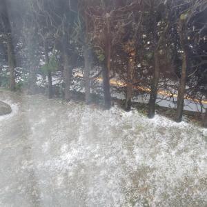 福岡は初雪です(^▽^)