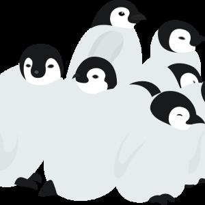 【SEO対策】ペンギンアップデートとは何か知ろう!