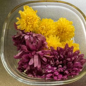 「のーがえい」で食用菊のお浸し