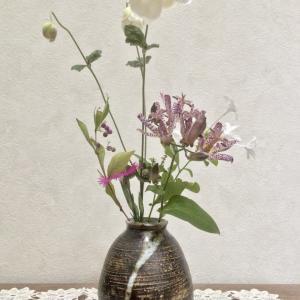 名残の季節  残花