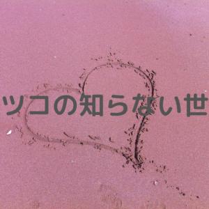 マツコの知らない世界。寺嶋由芙とサンリオキャラクターまとめ。