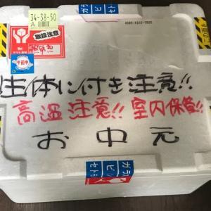 お中元(ジャイアントフローラルヘッケルクロス番外編)