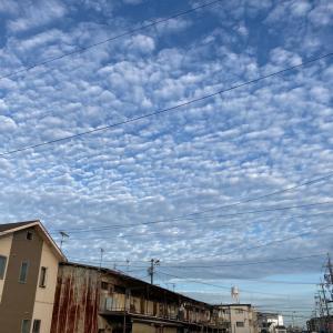 ウォーキング24日目 名古屋城