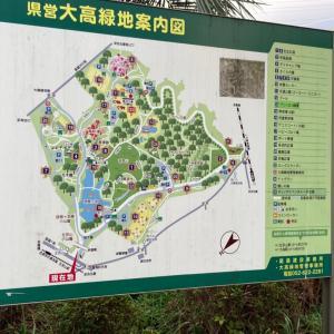 ウォーキング123日目  あいち健康の森公園