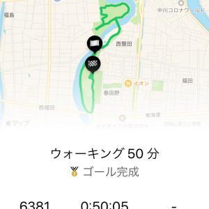 ウォーキング129日目  東尋坊・せいこ蟹丼