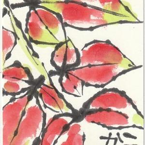 南天の紅葉