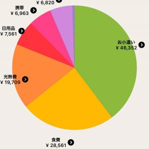【家計簿】共働き派遣OLの2月分出費
