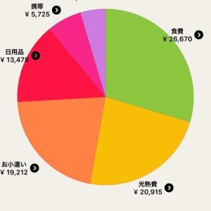 【家計簿】共働き派遣OLの5月分出費