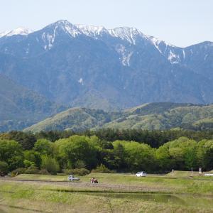 美しい日本の山を走れる自転車乗りってやっぱり幸せ者だと思う