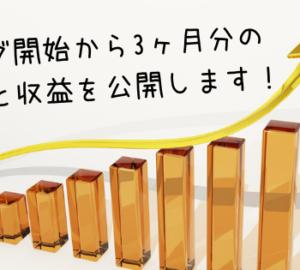 【運営日記】成果は…? ブログの3ヶ月分のPV数と収益を公開します!(これが現実)