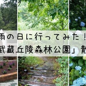 【1人旅】雨の日散歩は楽しい!「国営武蔵丘陵森林公園」散策レポ