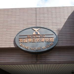 茨城県自然博物館 ~ ミュージアムパーク ~