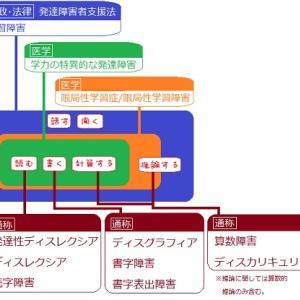 SLD【限局性学習障害】国語のテスト