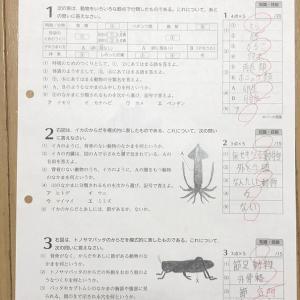 期末テスト前-理科のテスト