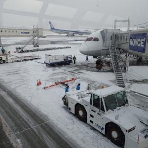 SFC#10 三角飛びで気温差大きく北海道から沖縄への長距離便で、PP大量ゲットです!