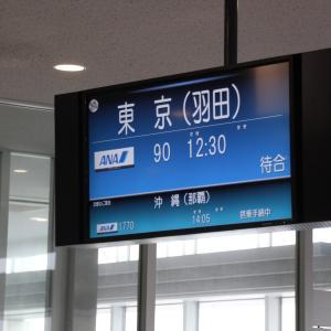 SFC修行#13 プラチナ獲得への最終フライトを飾るのは、石垣〜羽田便ボーイング787Dreamlinerです!