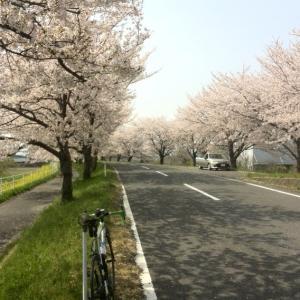 浜松MTB4h