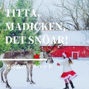 【雪の森のリサベット】リンドグレーンの描く雪国の姉妹の物語。クリスマスプレゼントに。【小学校低学年以上】