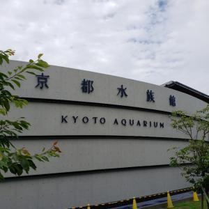 京都水族館とキンメダイ
