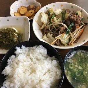 今日のごはん(肉野菜いため) 2020.8.8
