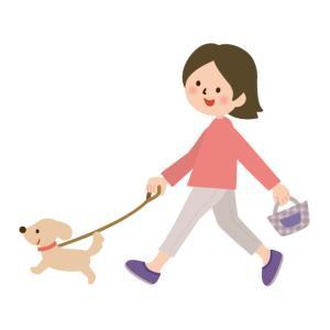 エスパドリーユで散歩に行こう
