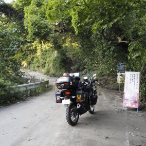 (1)野良キャン(金谷元名林道)
