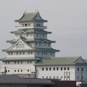謎の豊田城(常総市)