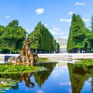 ウィーンでコロナに感染しないためには! 6月17日(水)