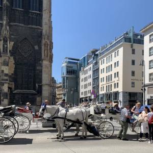 オーストリア情報 新型コロナ、オーバーエーステライヒ州状況