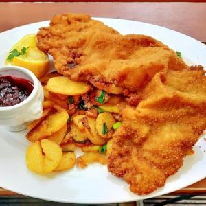 ウィーン レストラン・リストを拒否する人 オーストリア コロナ状況