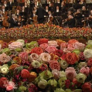 オーストリア・ウィーンから、ウィーンフィル・ニューイヤーコンサートの感想など