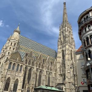 ウィーンのシュテファン大聖堂がワクチン接種ストリートになる件について