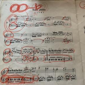ピアノの先生方へ質問です。生徒さんの楽譜に、消しゴムで消せない赤鉛筆で書き込みますか?