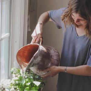 【おうちで家庭菜園】自宅で楽しく過ごすコツは?~豆苗を育ててみた~