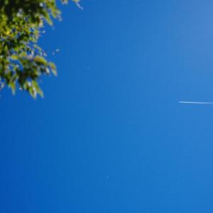 空を飛べるモニターを探してきます