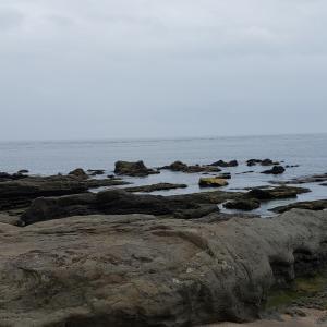 ✿白浜フラワーパーク✿ 2回目のテント泊 大自然の洗礼 豪雨編