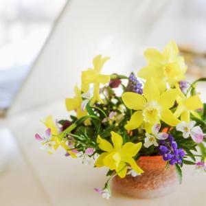 花の定期便でおうち時間を素敵にグレードアップ! サブスク5選