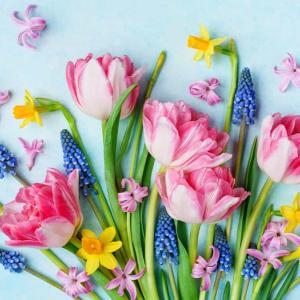 切り花を長持ちさせる3つの方法でおうち時間を素敵に過ごす